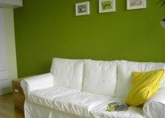 绿色家装在自然里自由呼吸