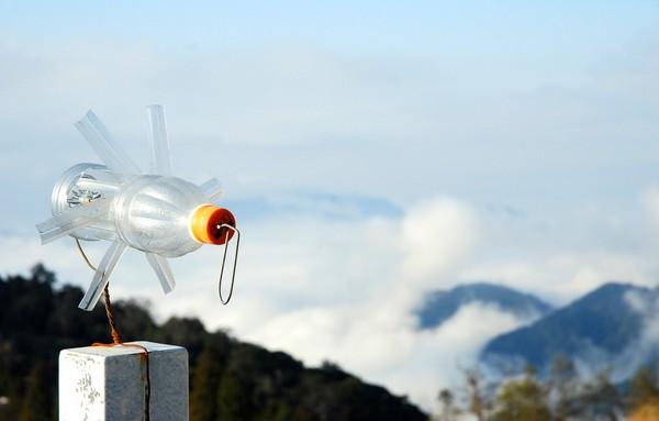塑料瓶变废为宝手工制作图片欣赏