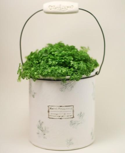 巧手制作之废弃品与花盆